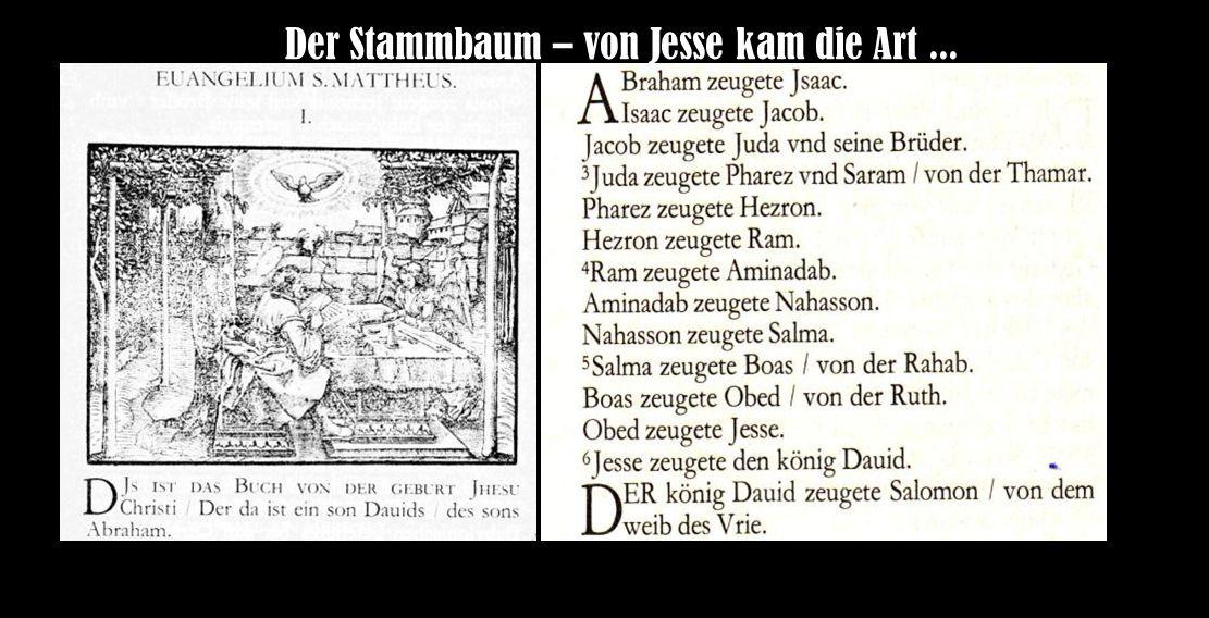 Der Stammbaum – von Jesse kam die Art...