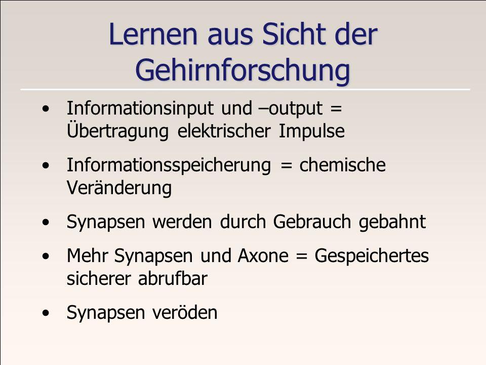 Lernen aus Sicht der Gehirnforschung Informationsinput und –output = Übertragung elektrischer Impulse Informationsspeicherung = chemische Veränderung