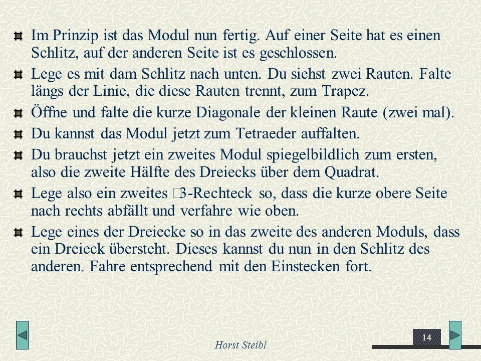 Horst Steibl 14 Im Prinzip ist das Modul nun fertig. Auf einer Seite hat es einen Schlitz, auf der anderen Seite ist es geschlossen. Lege es mit dam S