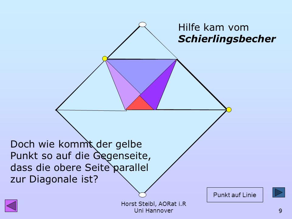 Horst Steibl, AORat i.R Uni Hannover8 Die Faltlinien im Rechteck dynageo Bei jedem Falten guckten mich diese Linien vorwurfsvoll an