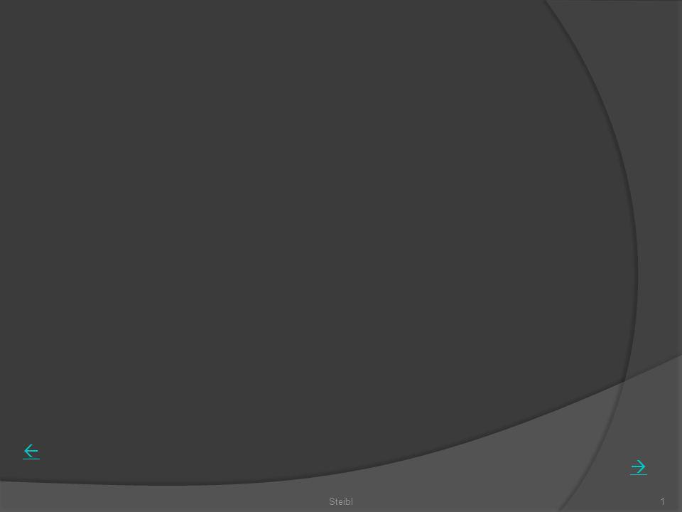 Steibl52 Das Stellenwertsystem Bündelungen, römische Zahlen Sechserschachteln (Eier) Zwölferbündel (Dutzend, Schock) Zwanzigerbündel (Frankreich) Mehrsystemblöcke: Einer, Zehner Hunderter, HZE HZE HZE Haushalt 2008.