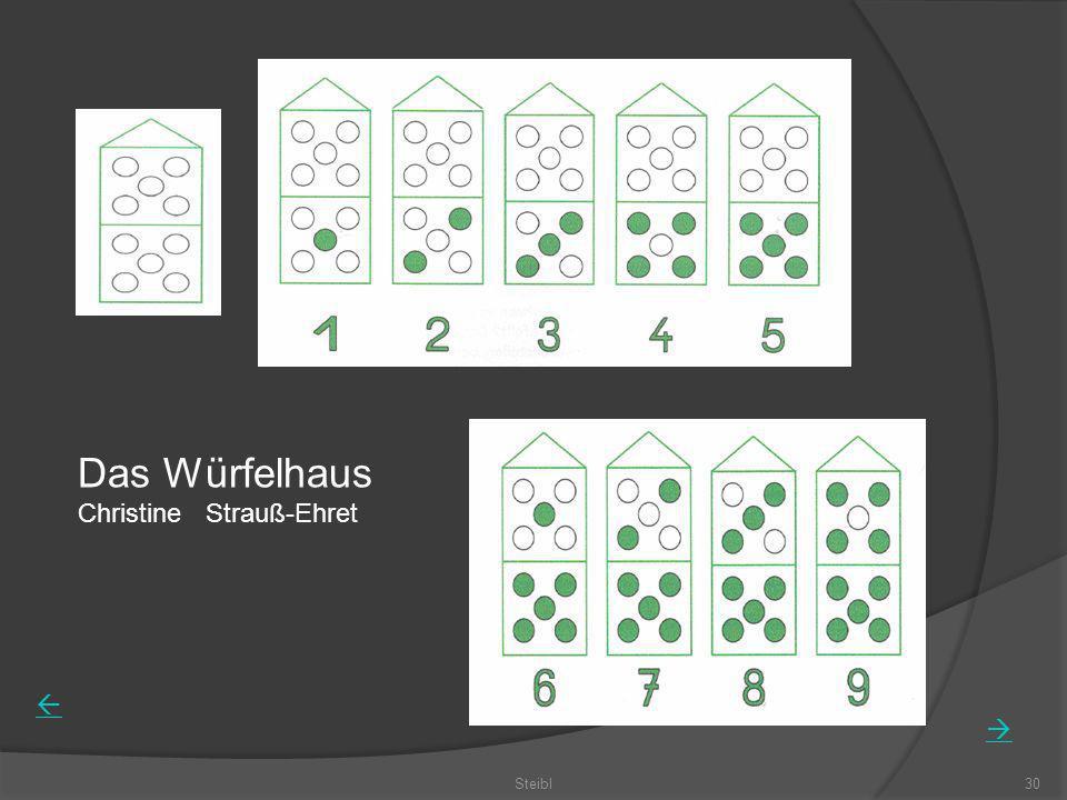 Steibl30 Das Würfelhaus Christine Strauß-Ehret