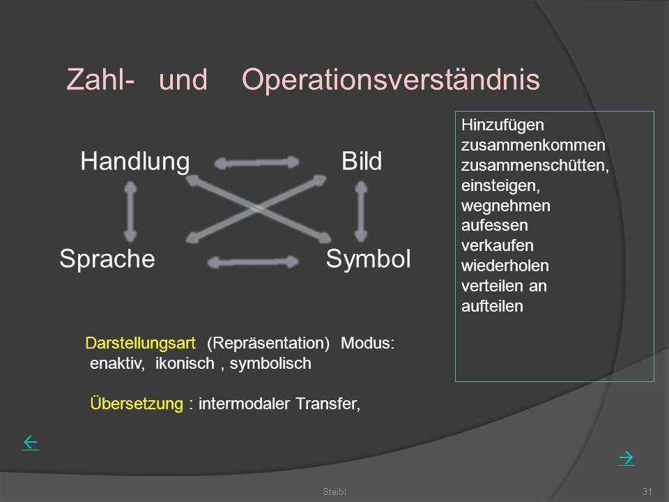 Steibl31 Zahl- und Operationsverständnis HandlungBild SpracheSymbol Darstellungsart (Repräsentation) Modus: enaktiv, ikonisch, symbolisch Übersetzung