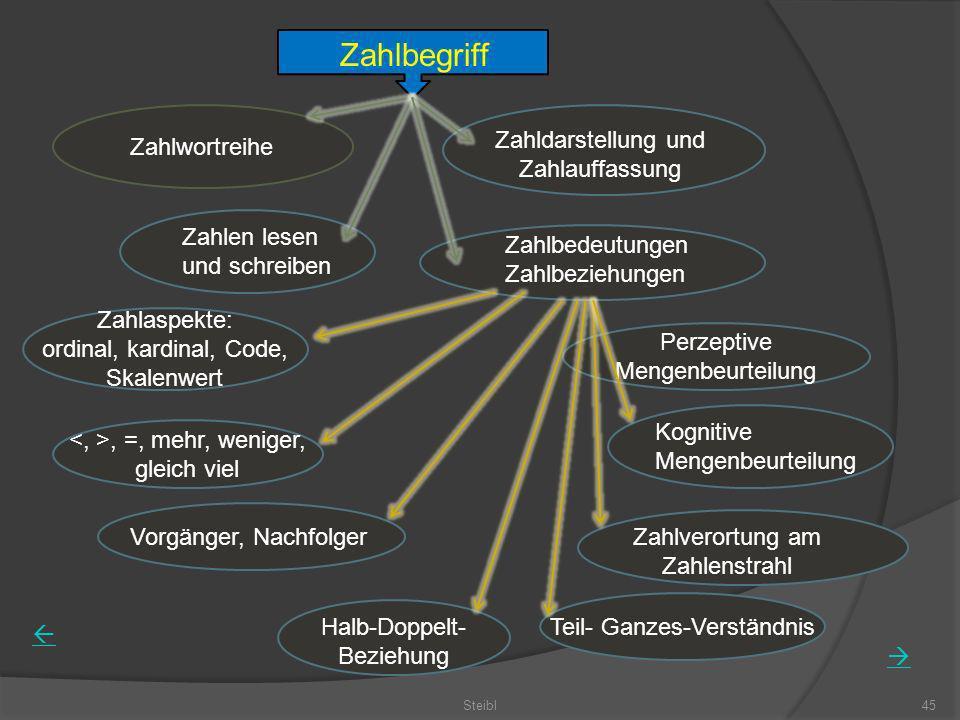 Steibl45 Zahlbegriff Zahlwortreihe Zahldarstellung und Zahlauffassung Zahlen lesen und schreiben Zahlbedeutungen Zahlbeziehungen Zahlaspekte: ordinal,