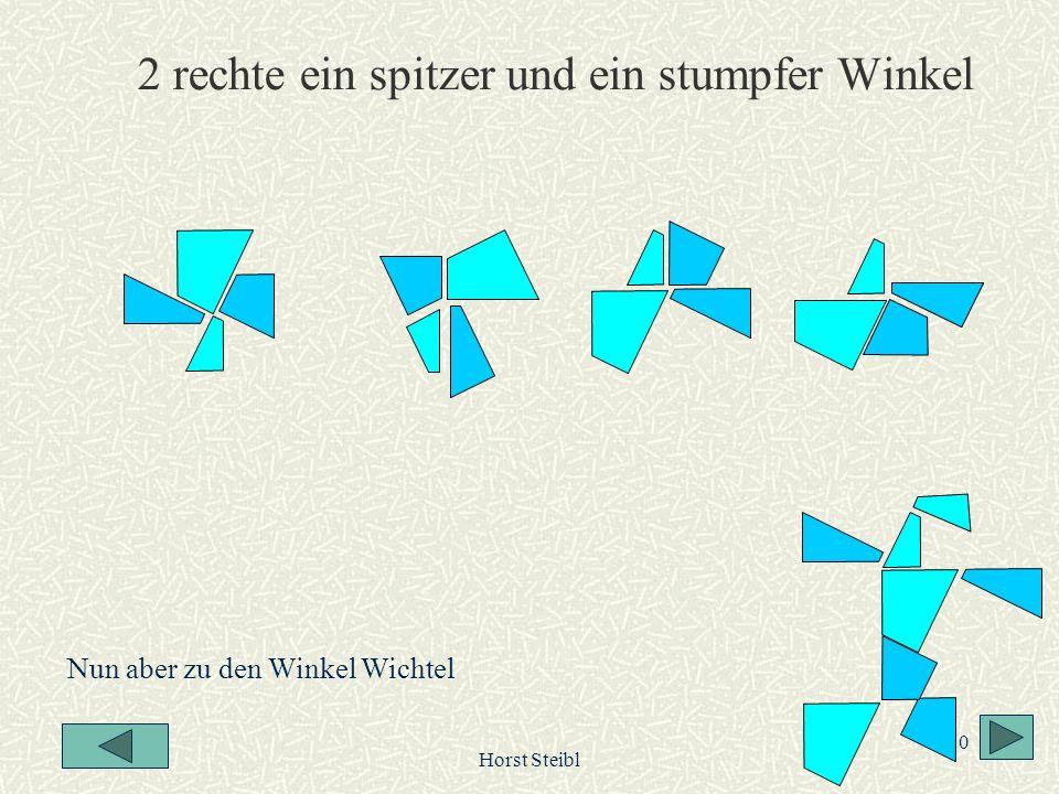 Horst Steibl 10 2 rechte ein spitzer und ein stumpfer Winkel Nun aber zu den Winkel Wichtel