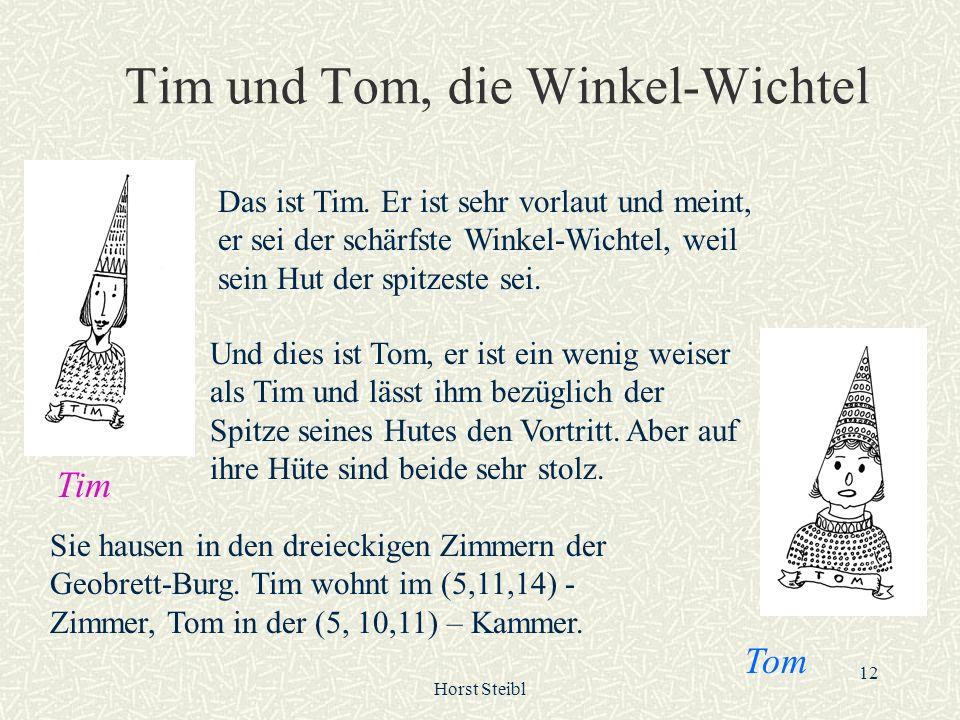 Horst Steibl 12 Tim und Tom, die Winkel-Wichtel Das ist Tim. Er ist sehr vorlaut und meint, er sei der schärfste Winkel-Wichtel, weil sein Hut der spi