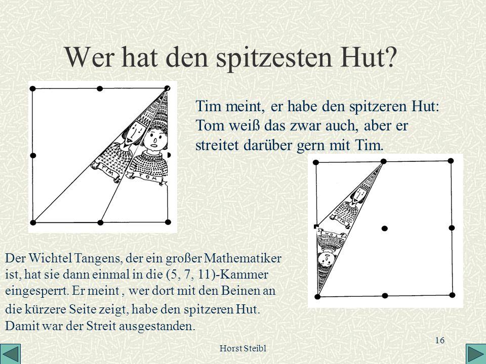 Horst Steibl 16 Wer hat den spitzesten Hut? Tim meint, er habe den spitzeren Hut: Tom weiß das zwar auch, aber er streitet darüber gern mit Tim. Der W
