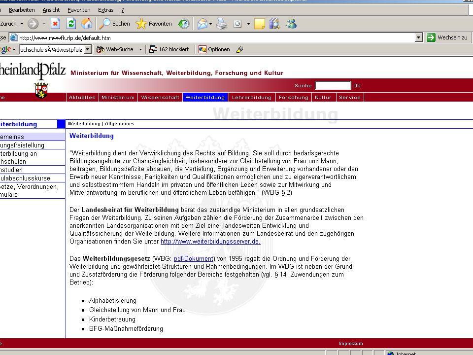 Förderrichtlinie Migrantinnen und Migranten FIF 02.12.2005 11