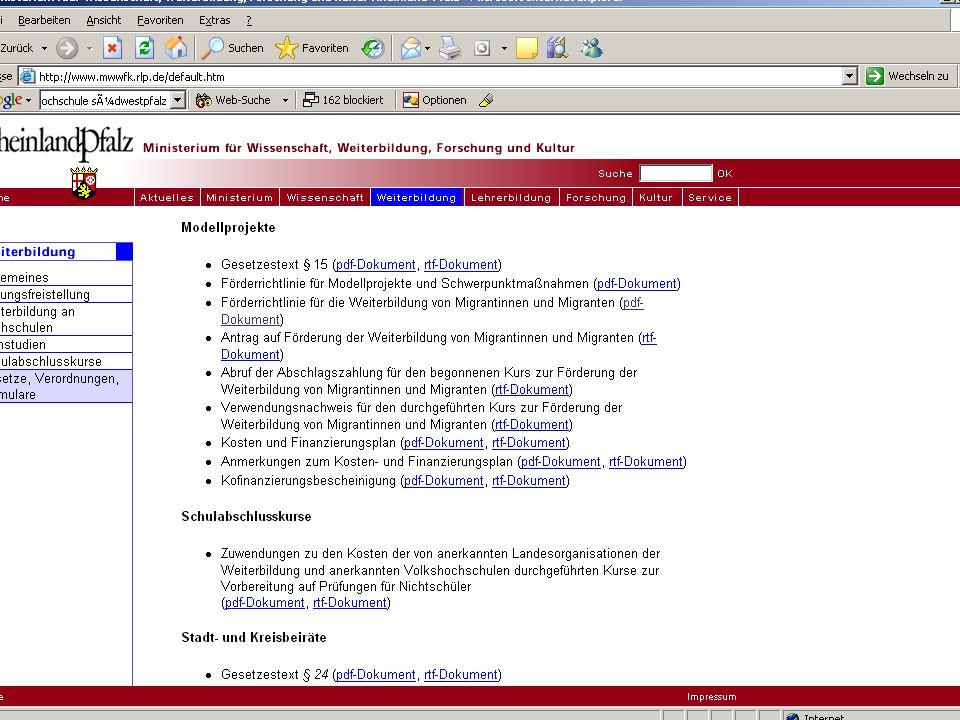 Förderrichtlinie Migrantinnen und Migranten FIF 02.12.2005 12