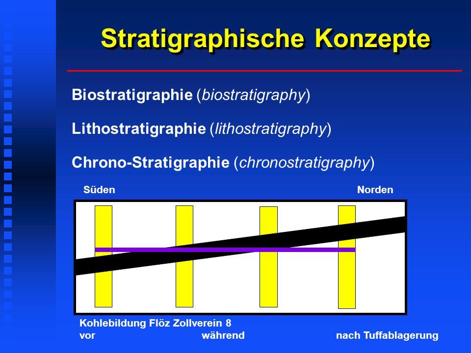 Stratigraphische Konzepte Biostratigraphie (biostratigraphy) Lithostratigraphie (lithostratigraphy) Chrono-Stratigraphie (chronostratigraphy) Süden Norden Kohlebildung Flöz Zollverein 8 vor während nach Tuffablagerung