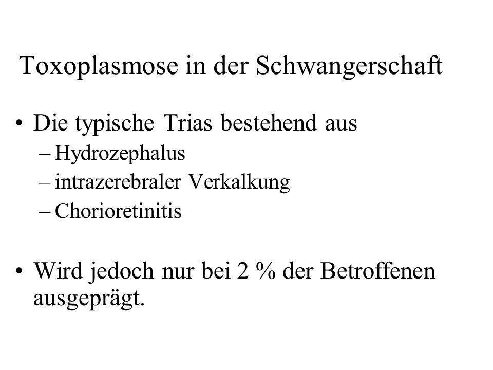 Toxoplasmose in der Schwangerschaft Die typische Trias bestehend aus –Hydrozephalus –intrazerebraler Verkalkung –Chorioretinitis Wird jedoch nur bei 2