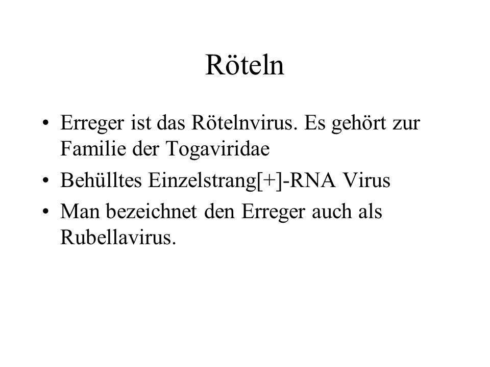 Röteln Erreger ist das Rötelnvirus. Es gehört zur Familie der Togaviridae Behülltes Einzelstrang[+]-RNA Virus Man bezeichnet den Erreger auch als Rube