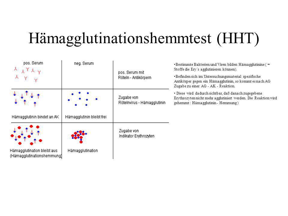 Hämagglutinationshemmtest (HHT) Bestimmte Bakterien und Viren bilden Hämagglutinine ( = Stoffe die Ery´s agglutinieren können). Befinden sich im Unter