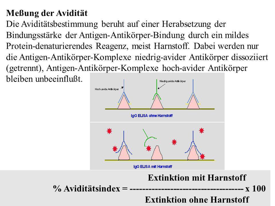Meßung der Avidität Die Aviditätsbestimmung beruht auf einer Herabsetzung der Bindungsstärke der Antigen-Antikörper-Bindung durch ein mildes Protein-d