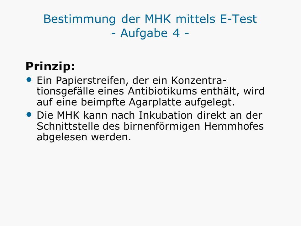 Bestimmung der MHK mittels E-Test - Aufgabe 4 - Prinzip: Ein Papierstreifen, der ein Konzentra- tionsgefälle eines Antibiotikums enthält, wird auf ein