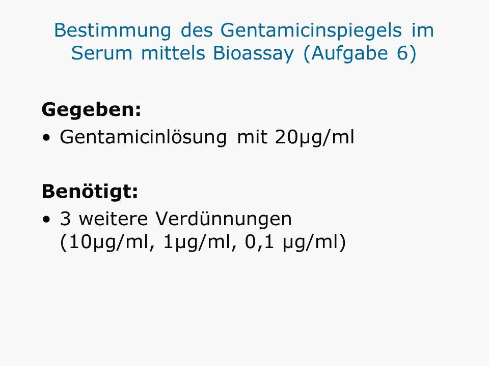 Bestimmung des Gentamicinspiegels im Serum mittels Bioassay (Aufgabe 6) Gegeben: Gentamicinlösung mit 20µg/ml Benötigt: 3 weitere Verdünnungen (10µg/m