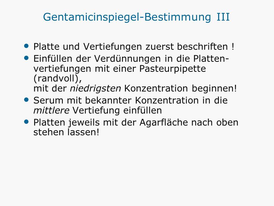 Gentamicinspiegel-Bestimmung III Platte und Vertiefungen zuerst beschriften ! Einfüllen der Verdünnungen in die Platten- vertiefungen mit einer Pasteu