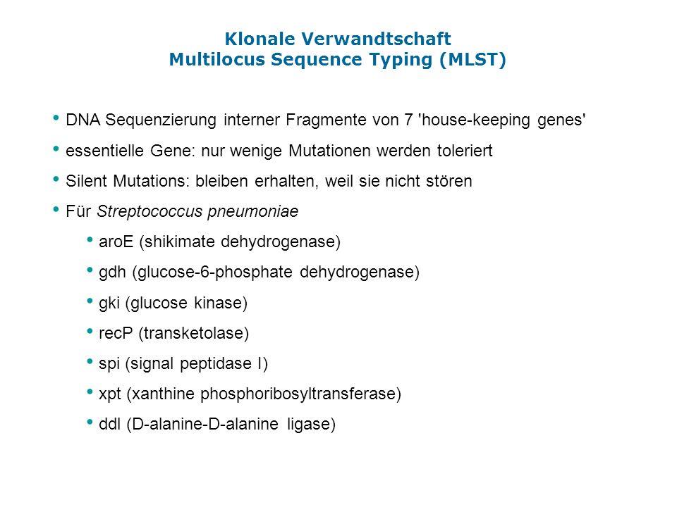 Klonale Verwandtschaft Multilocus Sequence Typing (MLST) DNA Sequenzierung interner Fragmente von 7 'house-keeping genes' essentielle Gene: nur wenige