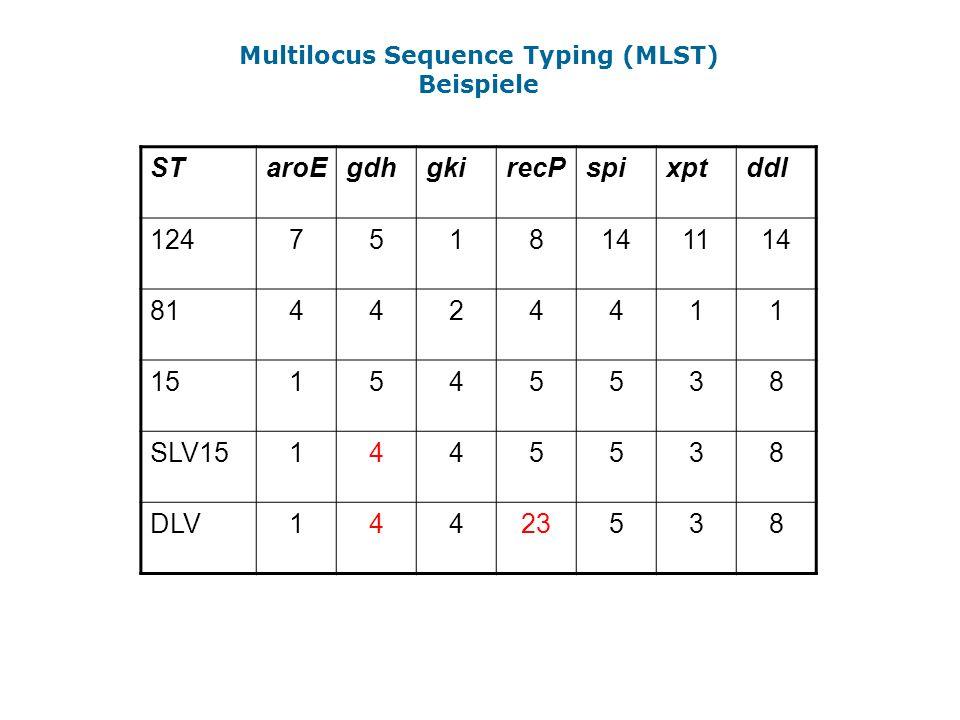 Multilocus Sequence Typing (MLST) Beispiele STaroEgdhgkirecPspixptddl 1247518141114 814424411 151545538 SLV151445538 DLV14423538
