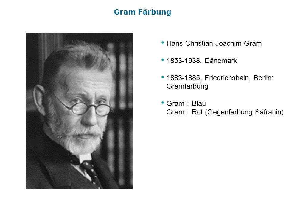 Hans Christian Joachim Gram 1853-1938, Dänemark 1883-1885, Friedrichshain, Berlin: Gramfärbung Gram + :Blau Gram - :Rot (Gegenfärbung Safranin) Gram F