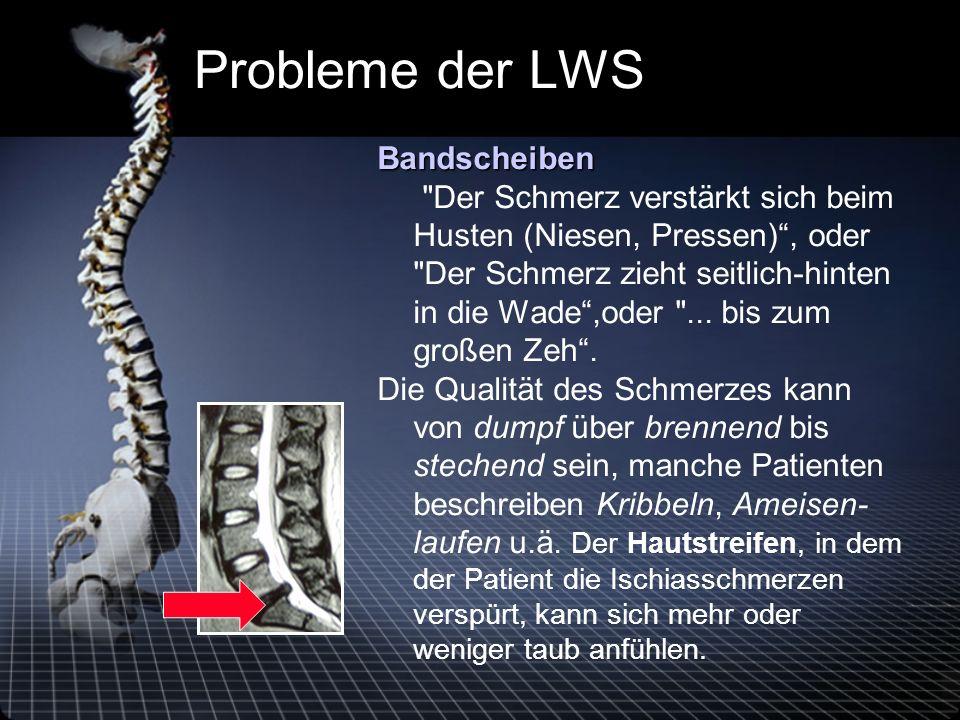 Probleme der LWS Bandscheiben Bandscheiben Der Schmerz verstärkt sich beim Husten (Niesen, Pressen), oder Der Schmerz zieht seitlich-hinten in die Wade,oder ...