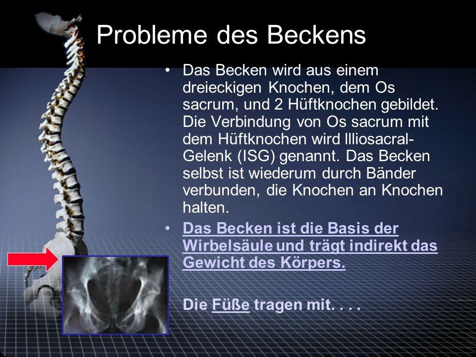 Probleme des Beckens Das Becken wird aus einem dreieckigen Knochen, dem Os sacrum, und 2 Hüftknochen gebildet.