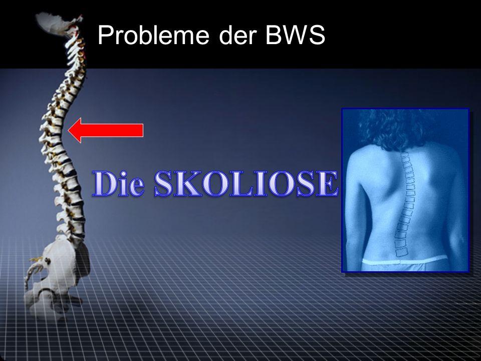 Probleme der BWS
