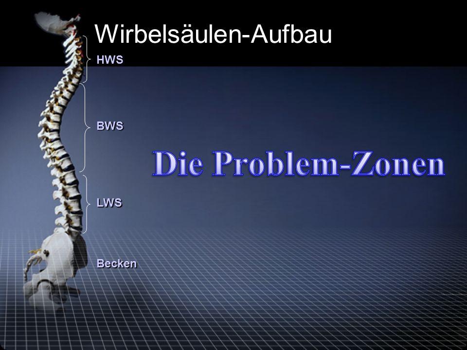 Becken LWS BWS HWS Wirbelsäulen-Aufbau