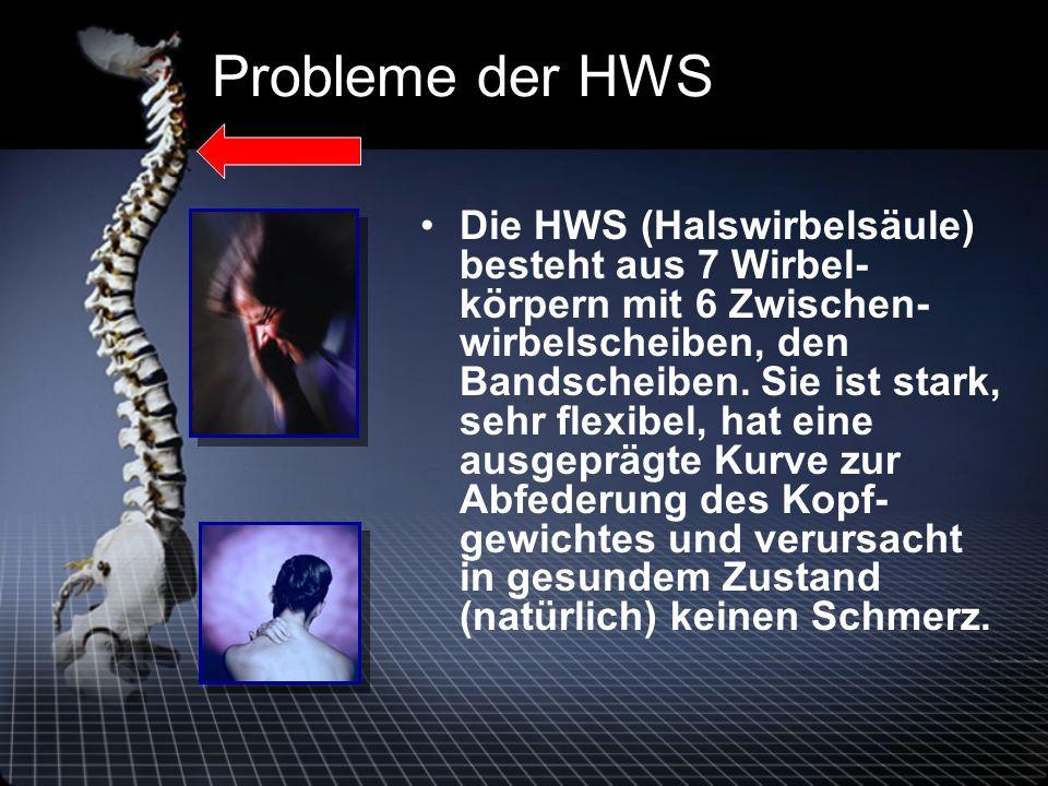 Probleme der HWS Die HWS (Halswirbelsäule) besteht aus 7 Wirbel- körpern mit 6 Zwischen- wirbelscheiben, den Bandscheiben.