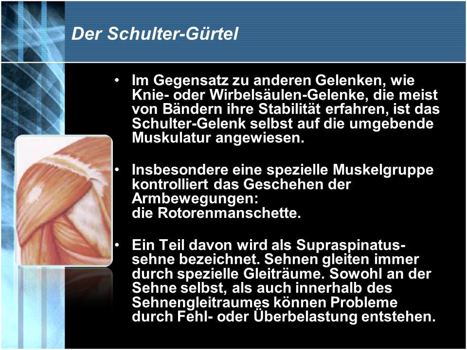 Der Schulter-Gürtel Im Gegensatz zu anderen Gelenken, wie Knie- oder Wirbelsäulen-Gelenke, die meist von Bändern ihre Stabilität erfahren, ist das Sch