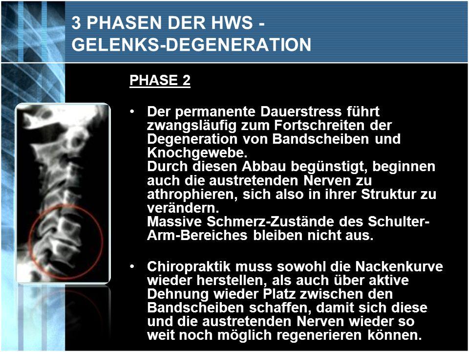 3 PHASEN DER HWS - GELENKS-DEGENERATION PHASE 3 Die dauerhafte Fehlstellung / Fehlbelastung der Wirbelsäulen- abschnitte führt letztlich zur Degenerations-Phase der Bandscheiben u n d der Wirbelkörper.
