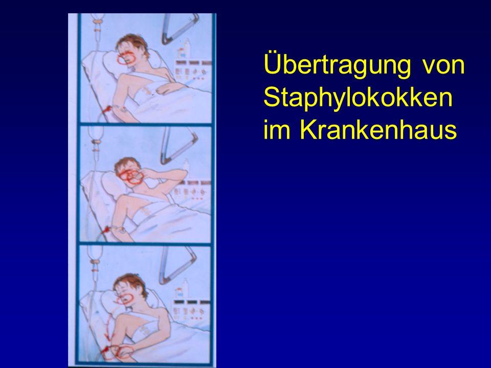 Übertragung von Staphylokokken im Krankenhaus