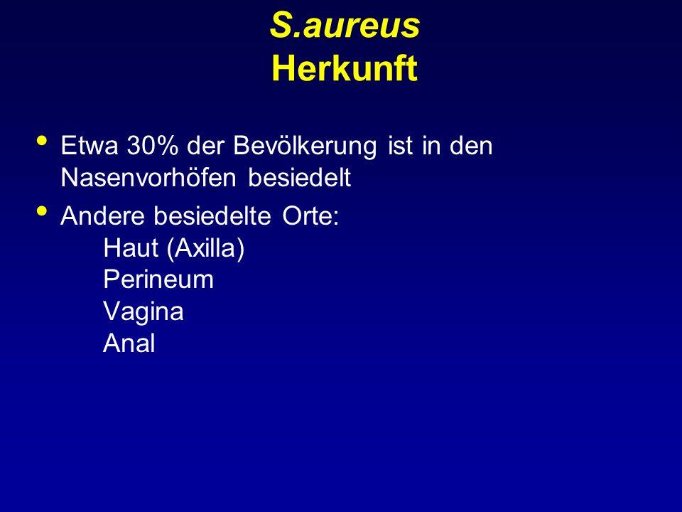 S.aureus Herkunft Etwa 30% der Bevölkerung ist in den Nasenvorhöfen besiedelt Andere besiedelte Orte: Haut (Axilla) Perineum Vagina Anal