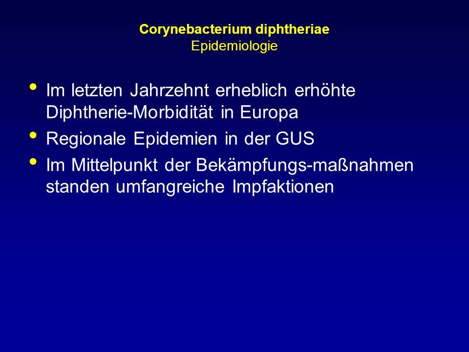 Corynebacterium diphtheriae Epidemiologie Im letzten Jahrzehnt erheblich erhöhte Diphtherie-Morbidität in Europa Regionale Epidemien in der GUS Im Mit
