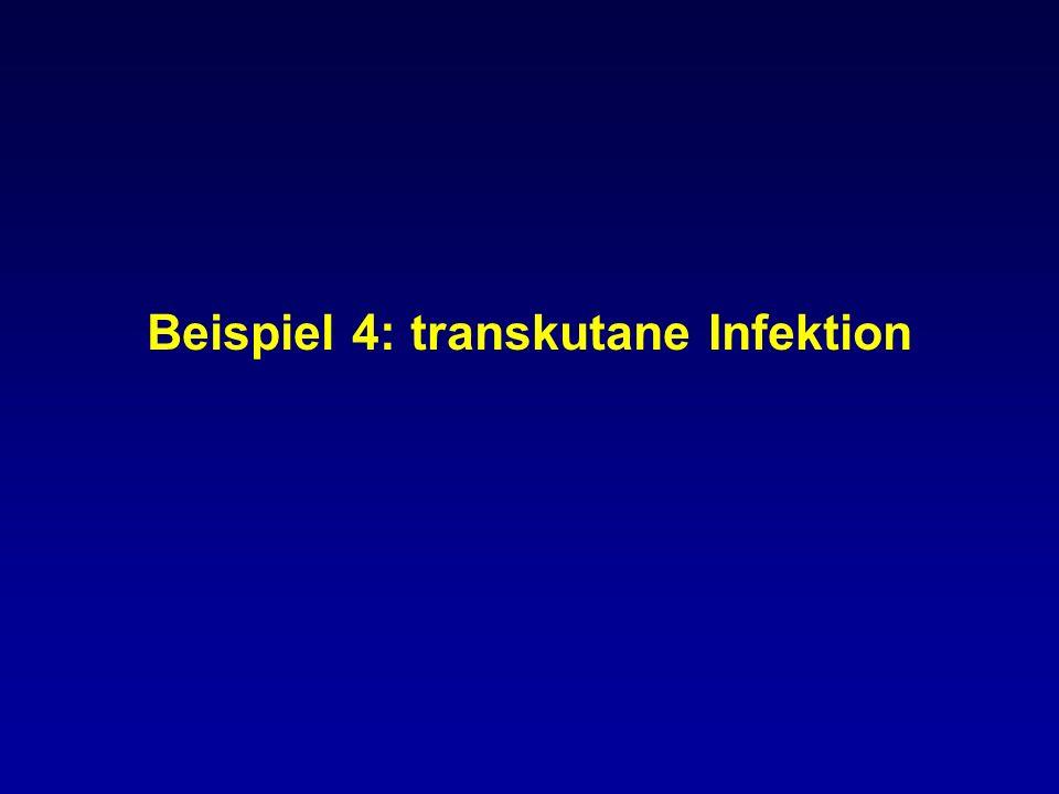 Beispiel 4: transkutane Infektion