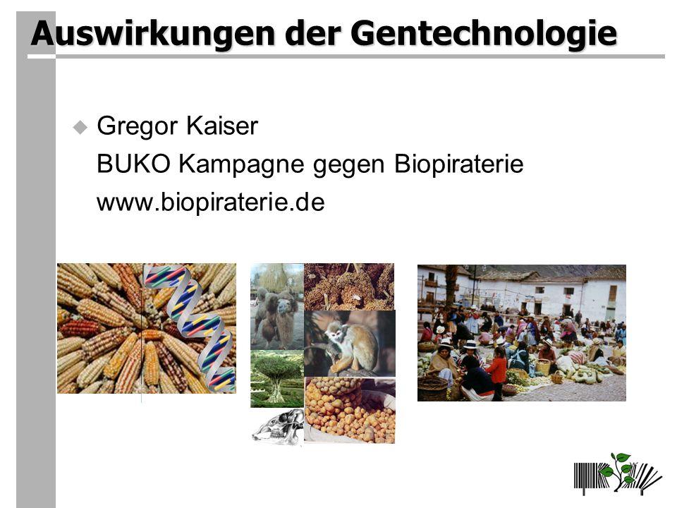 Auswirkungen der Gentechnologie Gregor Kaiser BUKO Kampagne gegen Biopiraterie www.biopiraterie.de