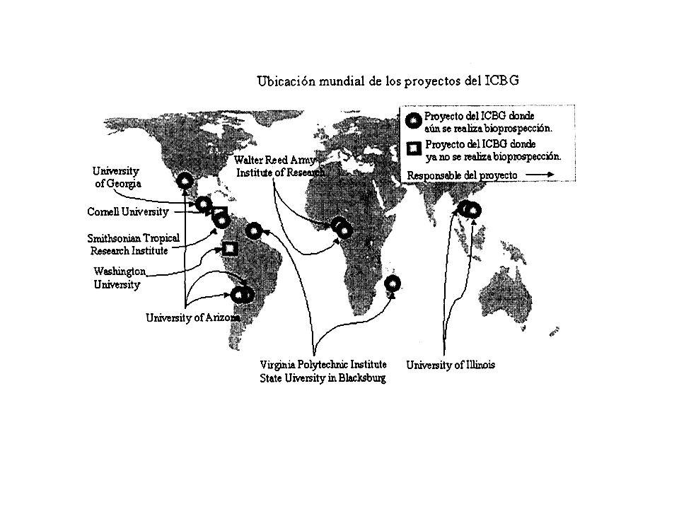 Rechtliche Rahmenbedingungen Patentrecht & TRIPS (Trade Related Intellectual Property Rights) Sortenschutzabkommen (UPOV) UNO- Konvention über Biologische Vielfalt (CBD)