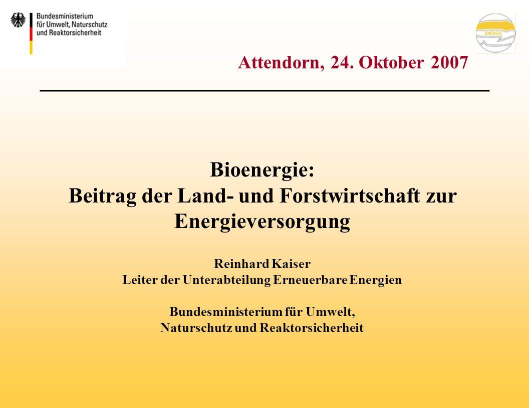 1.Politischer Rahmen 2.Bioenergie in Deutschland 3.Biomasseaktionspläne (EU, D) 4.Zusammenfassung