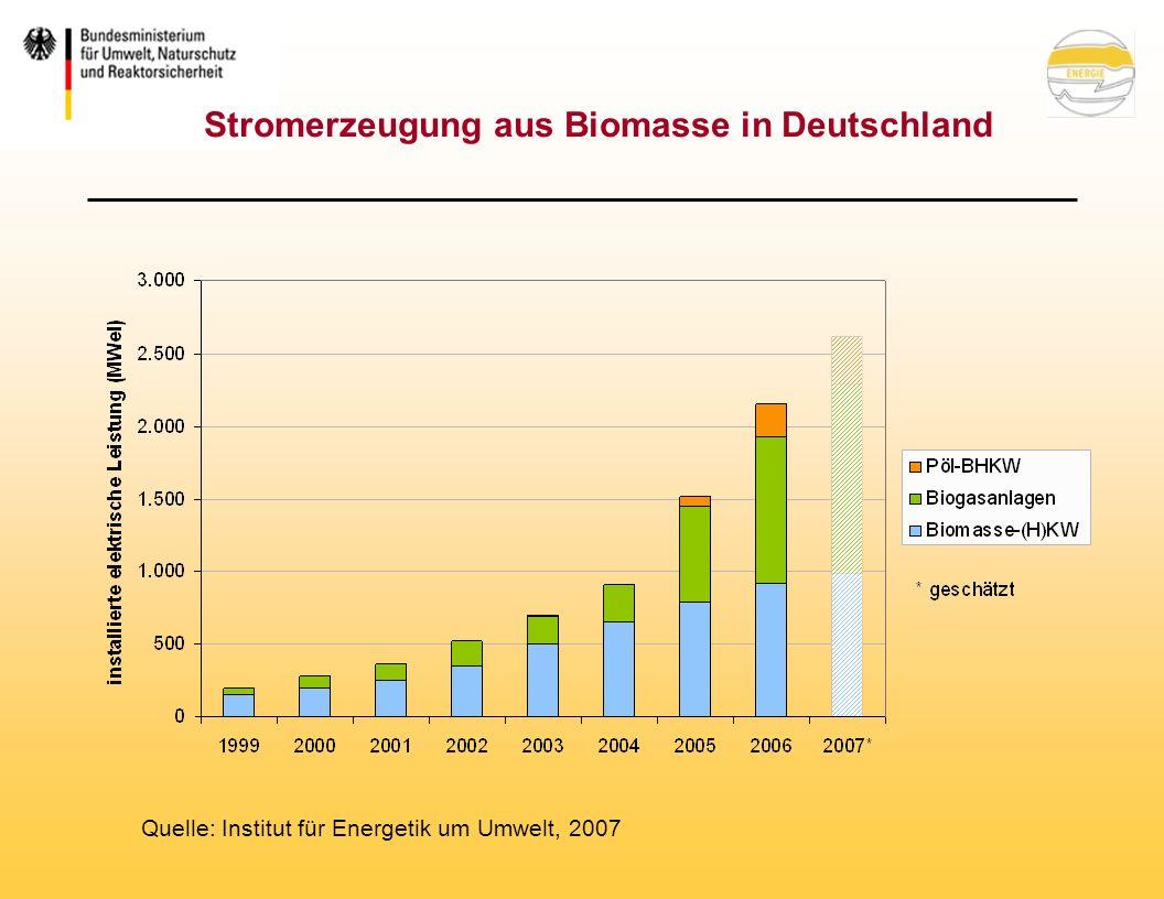 Stromerzeugung aus Biomasse in Deutschland Quelle: Institut für Energetik um Umwelt, 2007