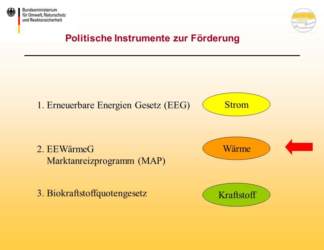 Politische Instrumente zur Förderung Kraftstoff 3.