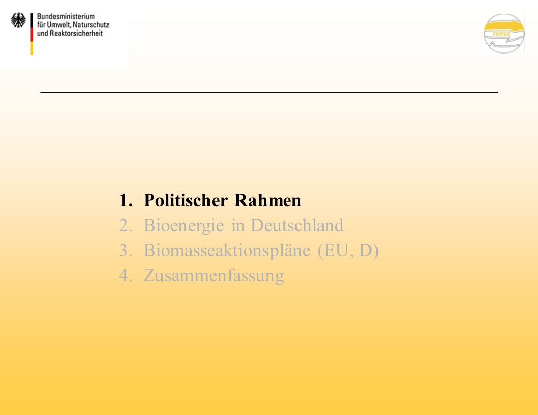 Kraftstoffe aus Biomasse heute in Deutschland hauptsächlich Biodiesel (ca.