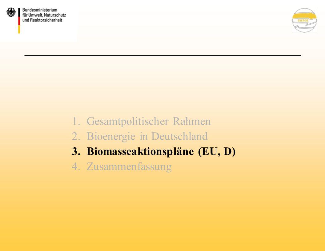 1.Gesamtpolitischer Rahmen 2.Bioenergie in Deutschland 3.Biomasseaktionspläne (EU, D) 4.Zusammenfassung