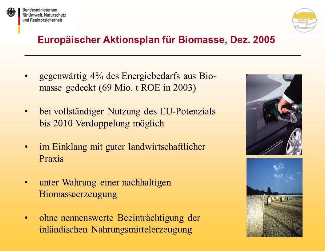 Europäischer Aktionsplan für Biomasse, Dez.