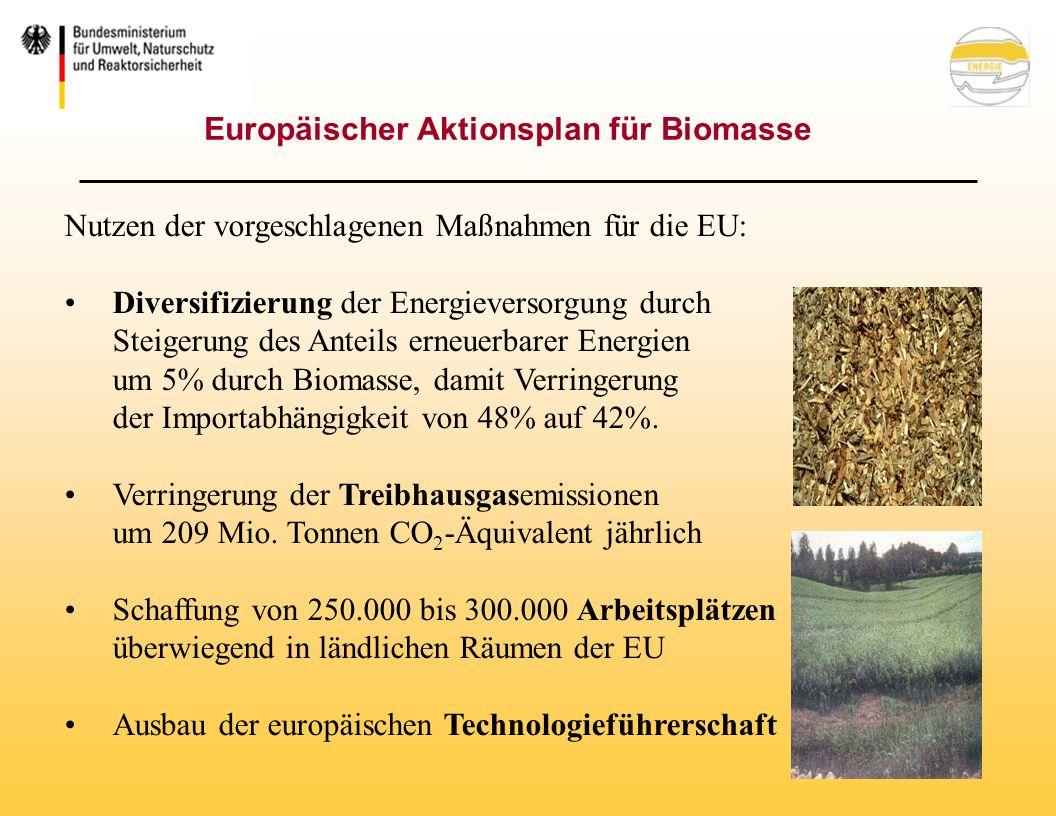 Europäischer Aktionsplan für Biomasse Nutzen der vorgeschlagenen Maßnahmen für die EU: Diversifizierung der Energieversorgung durch Steigerung des Anteils erneuerbarer Energien um 5% durch Biomasse, damit Verringerung der Importabhängigkeit von 48% auf 42%.