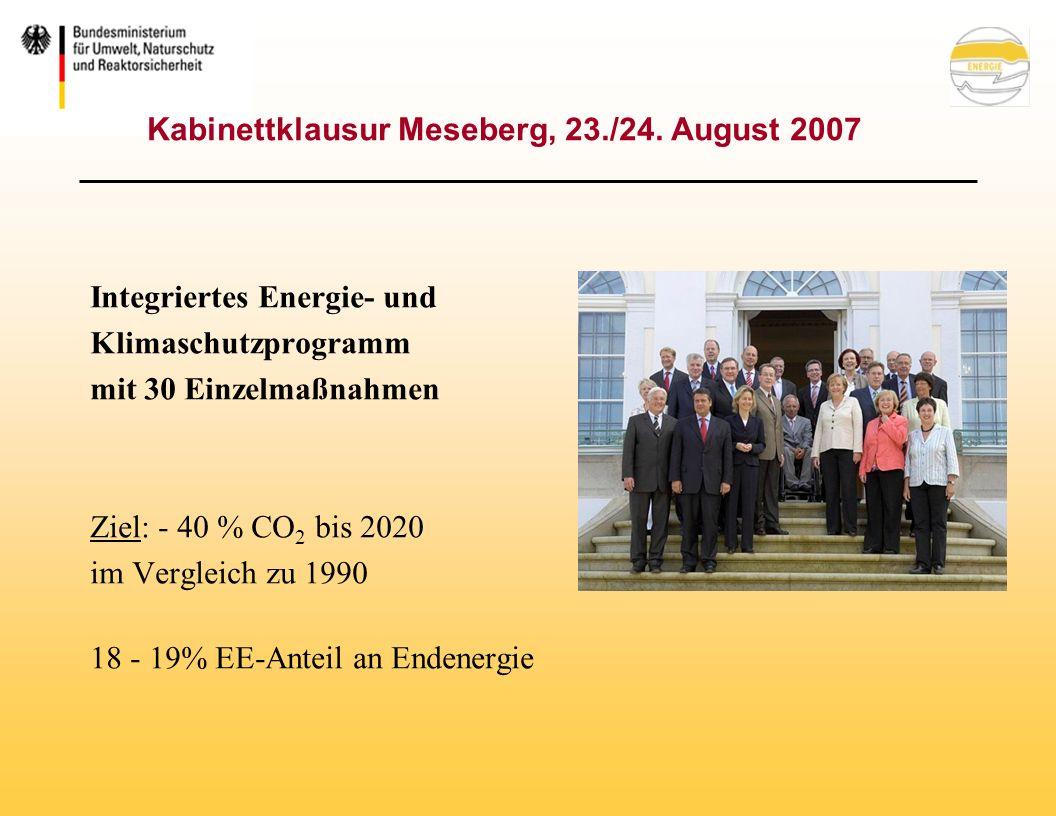 Der nächste Schritt: Nationale und regionale Biomasseaktionspläne Der europäische Biomasseaktionsplan (BAP) versteht sich als koordinierendes Programm für die Biomassenutzung Die KOM ruft die Mitgliedsstaaten auf nationale und regionale BAP zu erstellen: Formulierung nationaler, strategischer Rahmenpläne Planungssicherheit für die Wirtschaft Deutscher Biomasseaktionsplan wird noch in diesem Jahr vorgestellt.