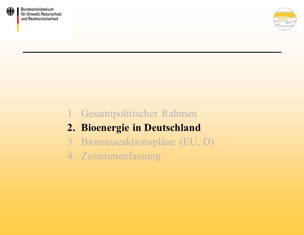 Einführung einer Positiv/Negativ-Liste der Nawaro-Bonusfähigen Biomasse Einführung einer Ermächtigungsgrundlage zum Erlass einer Verordnung mit Nachhaltigkeitsanforderungen Ausschluss von Palmöl und Sojaöl vom NaWaRo - Bonus, solange kein wirksames Zertifizierungssystem zur Sicherung des nachhaltigen Anbaus besteht BMU-Entwurf des EEG- Erfahrungsberichtes vom 5.
