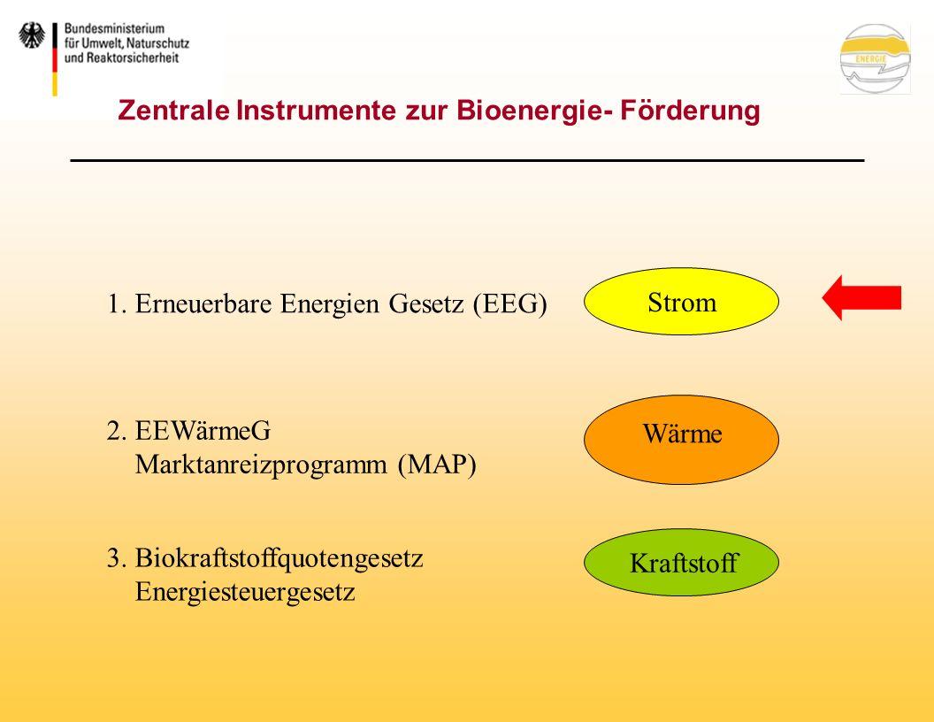Nationaler Biomasseaktionsplan (Deutschland) Steigerung und Steuerung der Nachfrage nach Biomasse zur Energieerzeugung (s.o.