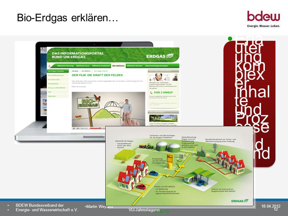 12 BDEW Bundesverband der Energie- und Wasserwirtschaft e.V. VLI-Jahrestagung Martin Weyand 18.04.2012 Seite 12 Bio-Erdgas erklären… Erlä uter ung kom