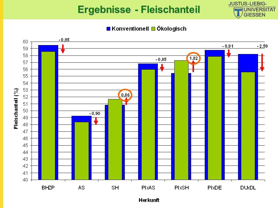 Ergebnisse - Fleischanteil