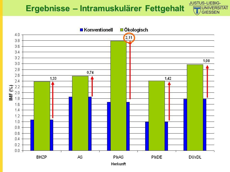Ergebnisse – Intramuskulärer Fettgehalt